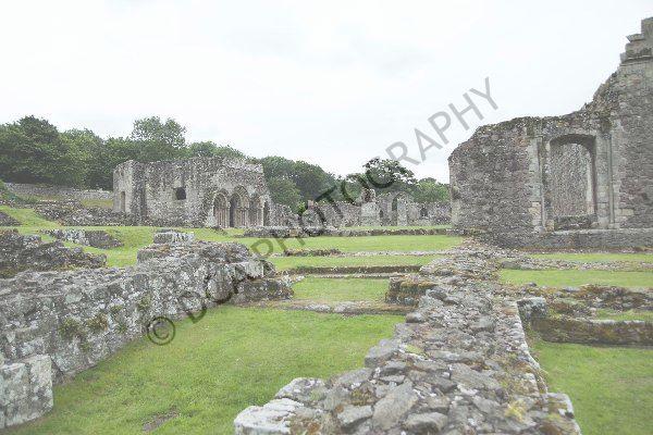 Haughmond Abbey (14)