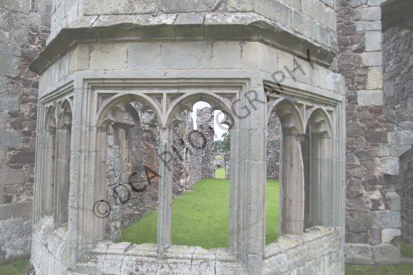 Haughmond Abbey (19)