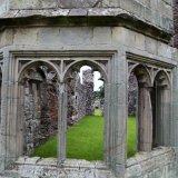 Haughmond Abbey (19)