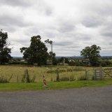 Haughmond Abbey (20)