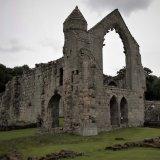 Haughmond Abbey (8)