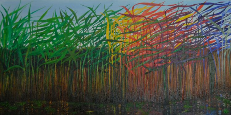 20101-Reeds with colourful aspirations