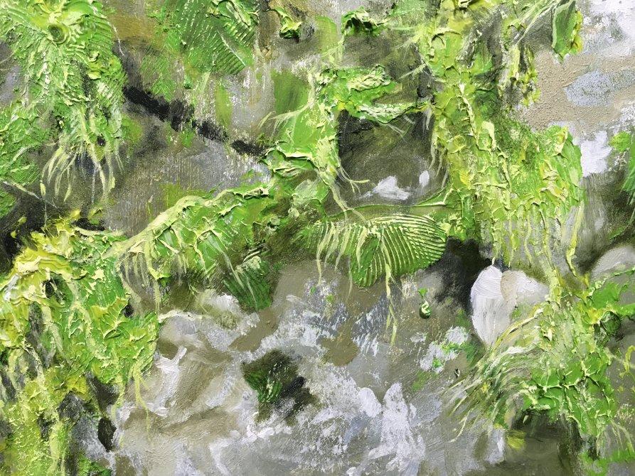 Algae on the rocks detail