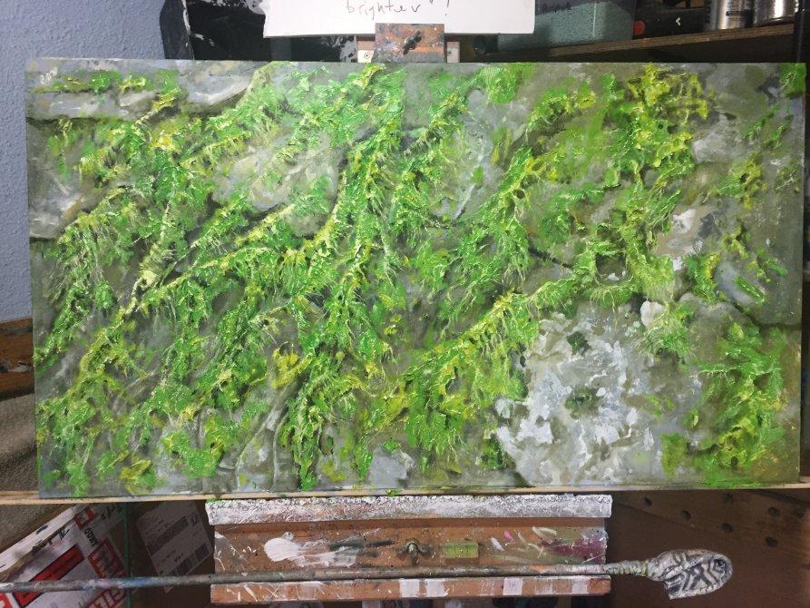 Algae on the rocks