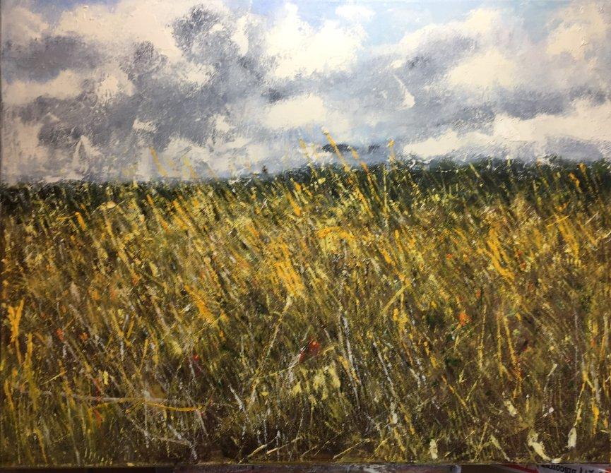 Summer field looking towards Montacute tower