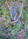 Paxos  2014 (5 24x35cm watercolour