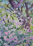 Paxos  2014 (17) 24x35cm  watercolour