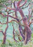 Marmari  Paxos 2012 (2)  24x35cm watercolour