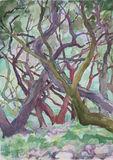 Paxos 2012 (3) 24x35cm watercolour