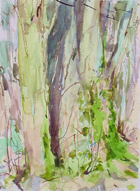 Lynch Wood 3 Feb 1998