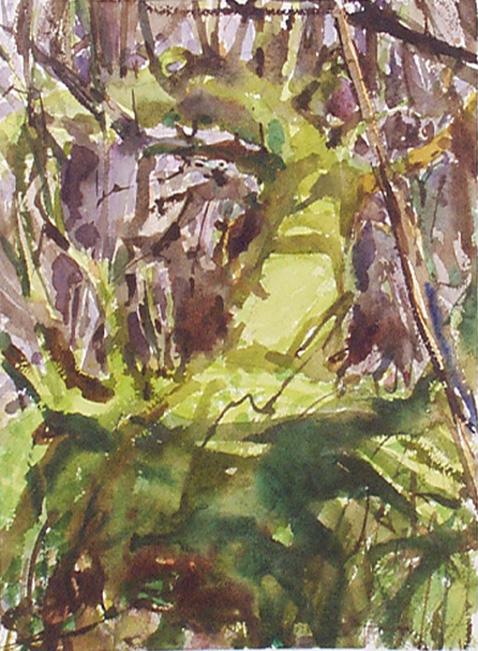 Lynch-Wood 9 Feb-1998