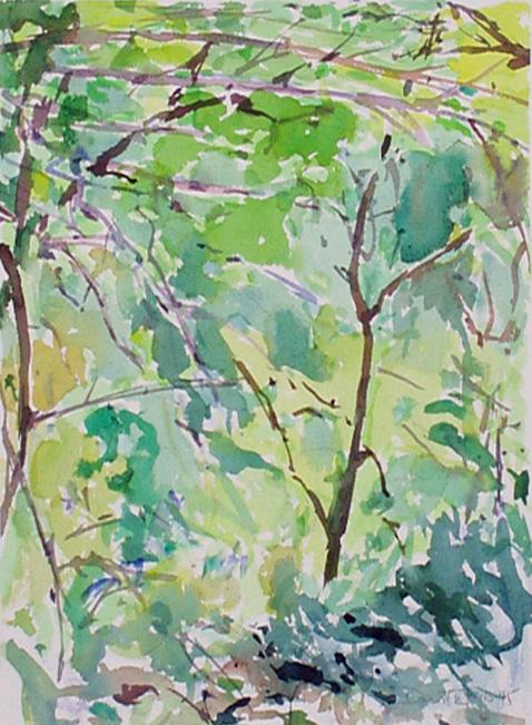 Lynch Wood 3 Sept 1995