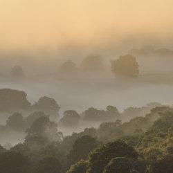 Mist in Nidderdale