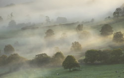 Autumn in Nidderdale