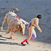 Bull fight, Arles, France