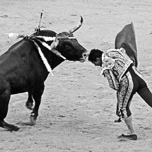 Bull fighter's kiss of death