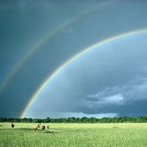 Rainbows and Topi