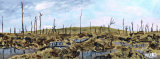 """Passchendaele 1917"" - Paint to order £62 includes P&P and delivery insurance"