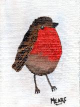 """Winter Robin"""