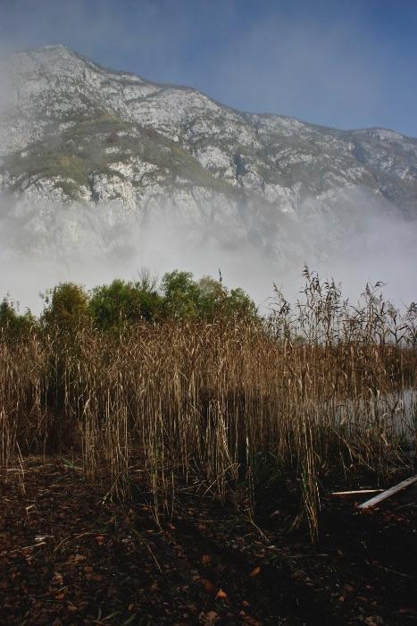 Lake Bohinji Slovenia