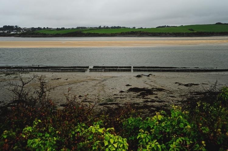 River Camel Cornwall UK