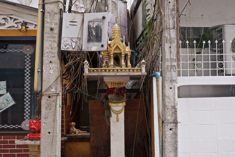 SESTREET 001 Cat & Shrine  Bangkok