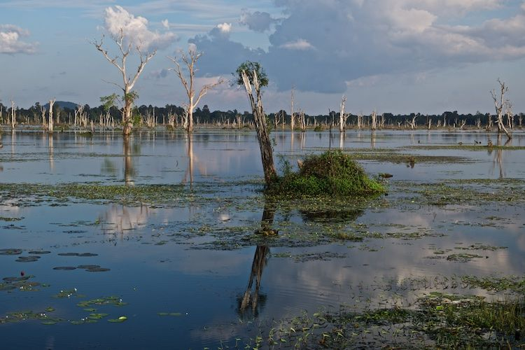 SEWATER 013 Jayatataka, Angkor Wat, Cambodia