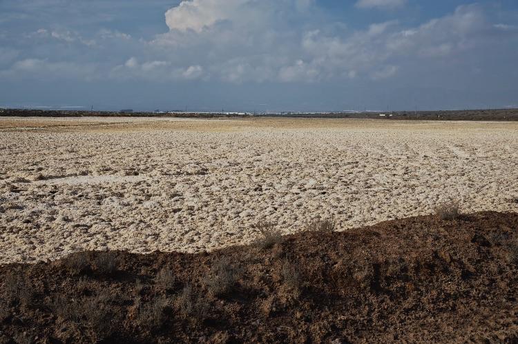 Salt marshes of Cabo de Gata Spain