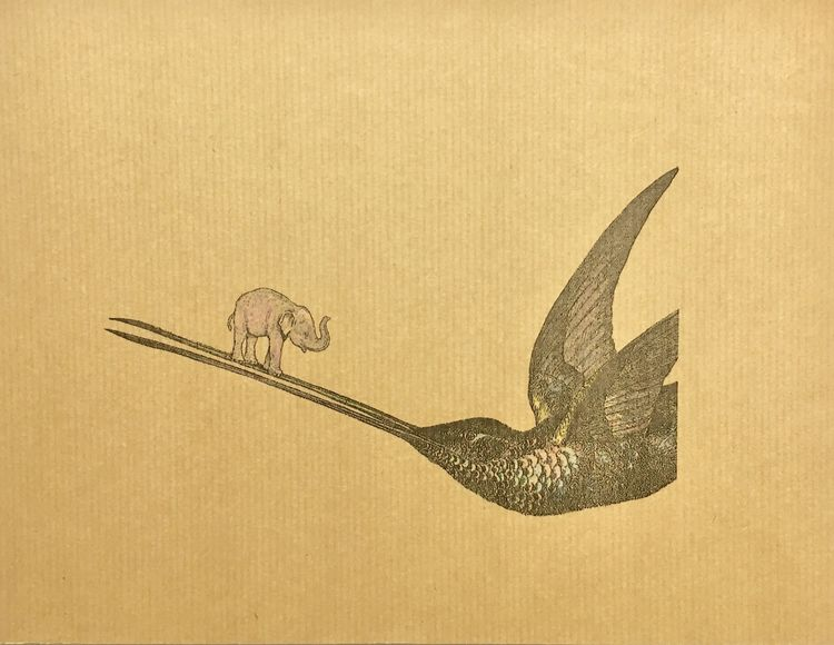 The Elephant and the Hummingbird from the novel The Woman at The Heart of The World by Martin Dowds