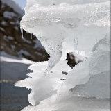 Antarctic portfolio 10