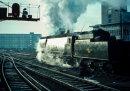 """34006 """"Bude"""" at Waterloo, 1962"""