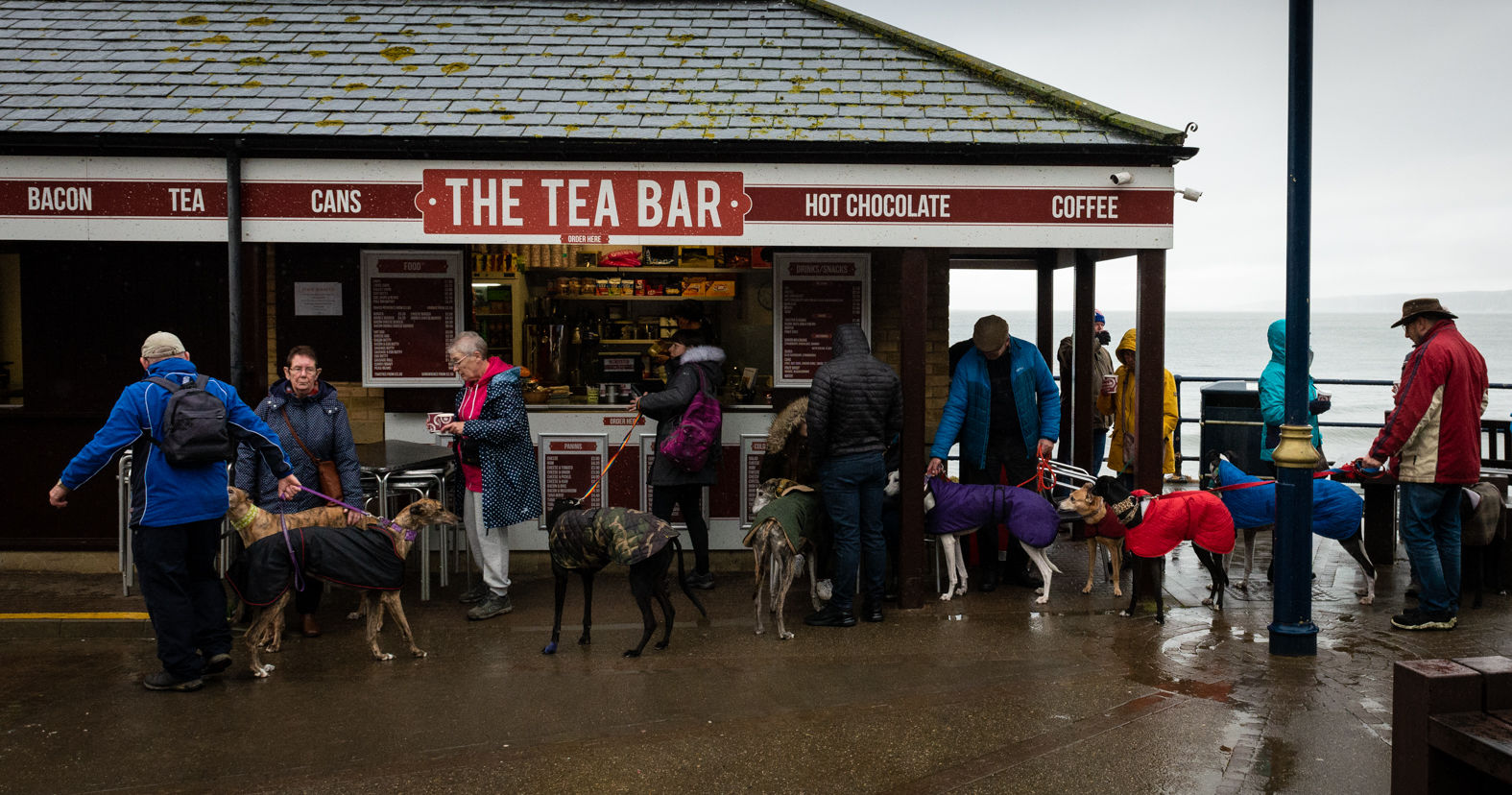 A Meeting of the Filey Greyhound Club