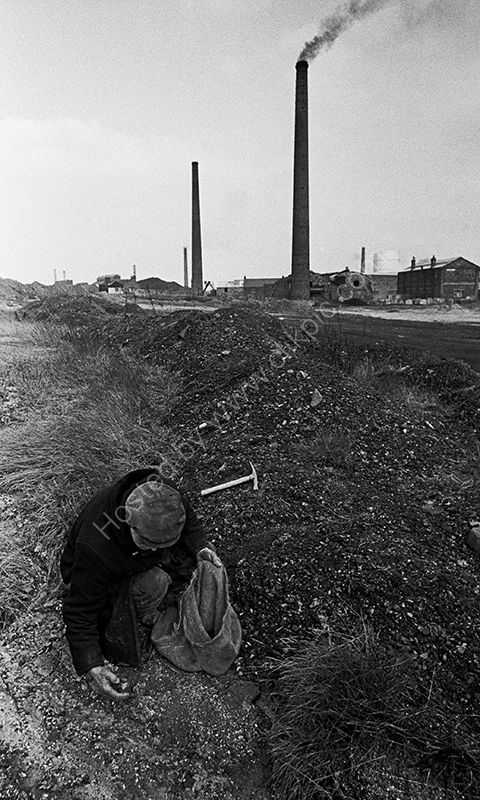 Collecting coal, near Wigan