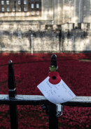 Field of poppies commemorating the centenary of the outbreak of the First World War,  Tower of London