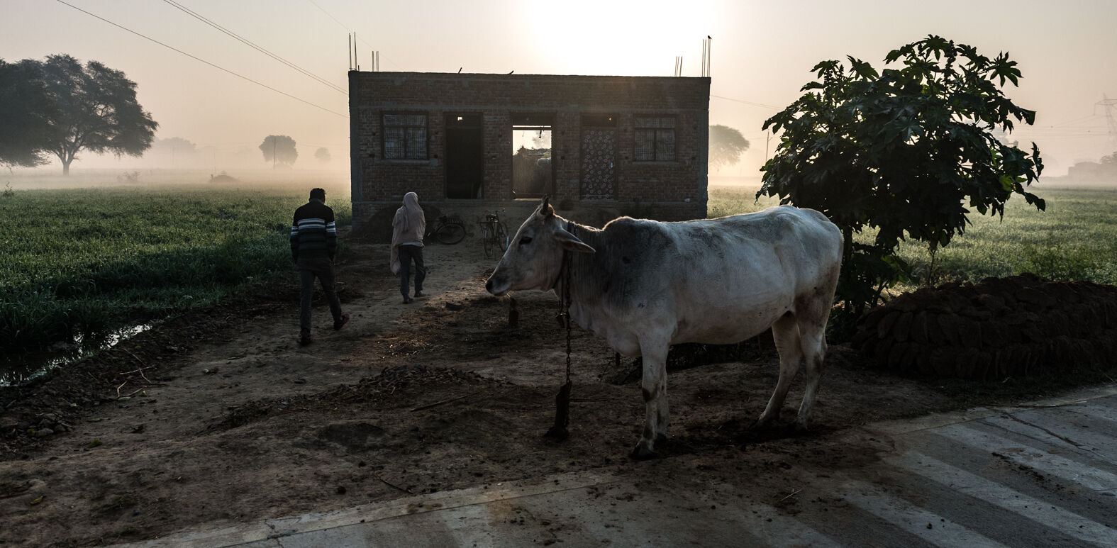 Chambal, Uttar Pradesh