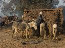 Brickworks, Chambal