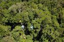Skyrail, Barron Gorge National Park, Cairns, North Queensland, Australia - aerial