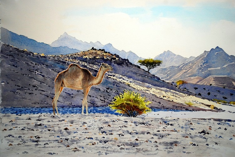Camel in Landscape. Watercolour 65 x 43cm