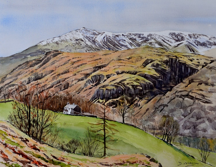 Coniston Old Man from Tarn Hows, Lake District. Watercolour 60 x 45cm