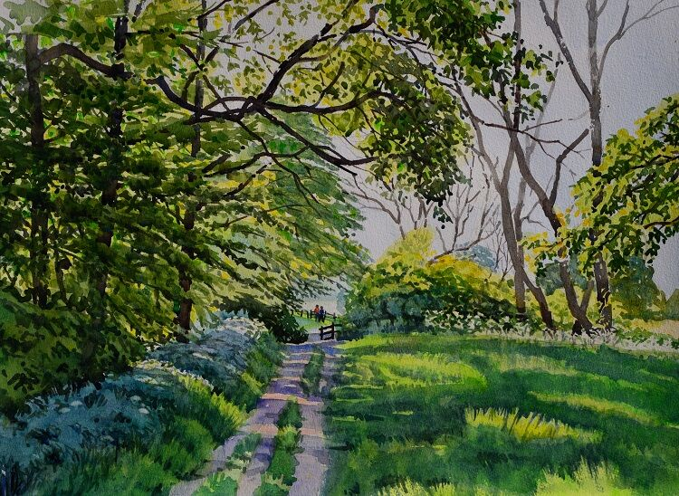 Summer Footpath, Cotswolds Watercolour 57 x 40cm