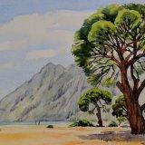 Umbrella Pines on the beach at Olympos, Antalya, Turkey. Watercolour 39 x 30cm