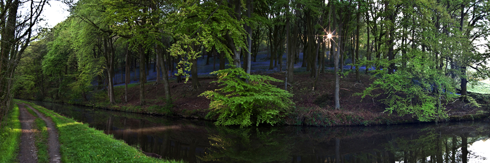Farnhill Spring Morning (panorama)