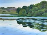 Bosherston Lily Ponds, Pembroke