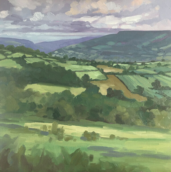 dawn harries, oil painting, crickhowell fields, landscape painting