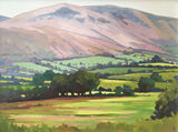 dawn harries, heather hills, brecon, oil painting, landscape painting