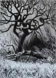 Ink Tree III