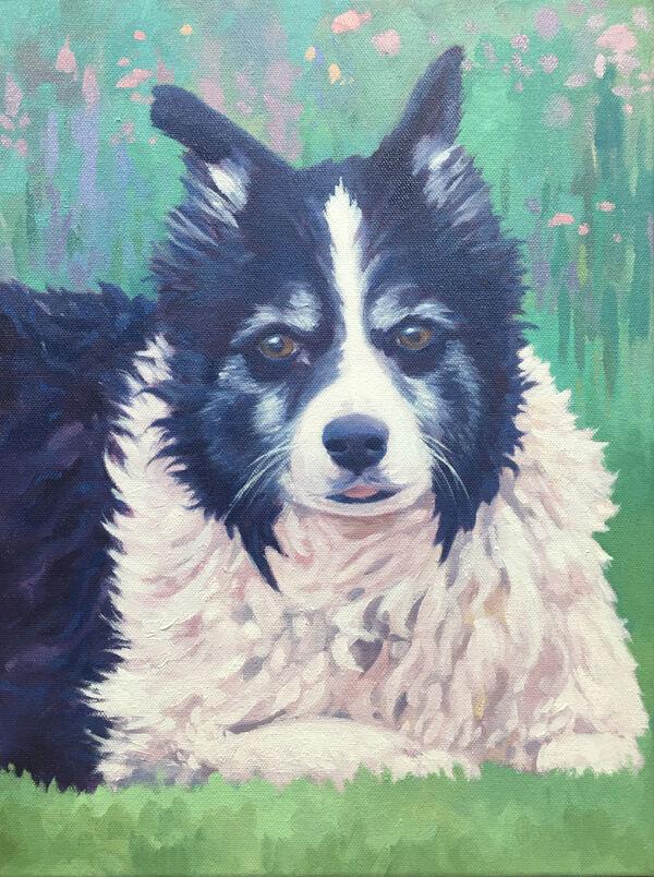 Oil painting of Jess, Border collie dog, pet portrait commission