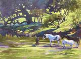 Noon Horses