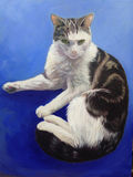 Spencer, cat portrait painting