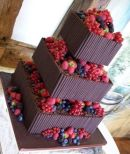 Square with Berries
